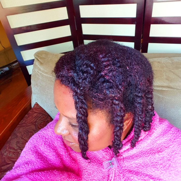 Hair in Twists