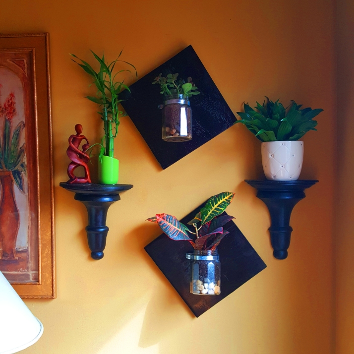 Planters on wall